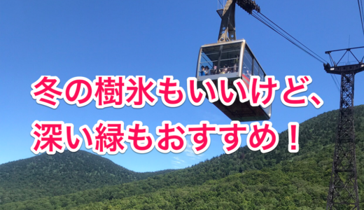 山頂駅でランチ。深い森を眺める八甲田山のロープウェイ。