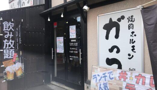 焼肉ホルモンがっつのテイクアウト「カルビ丼(600円)