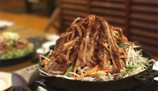 どうやって食べるんだ…肉マウンテン!!麺屋&酒家あっぷる